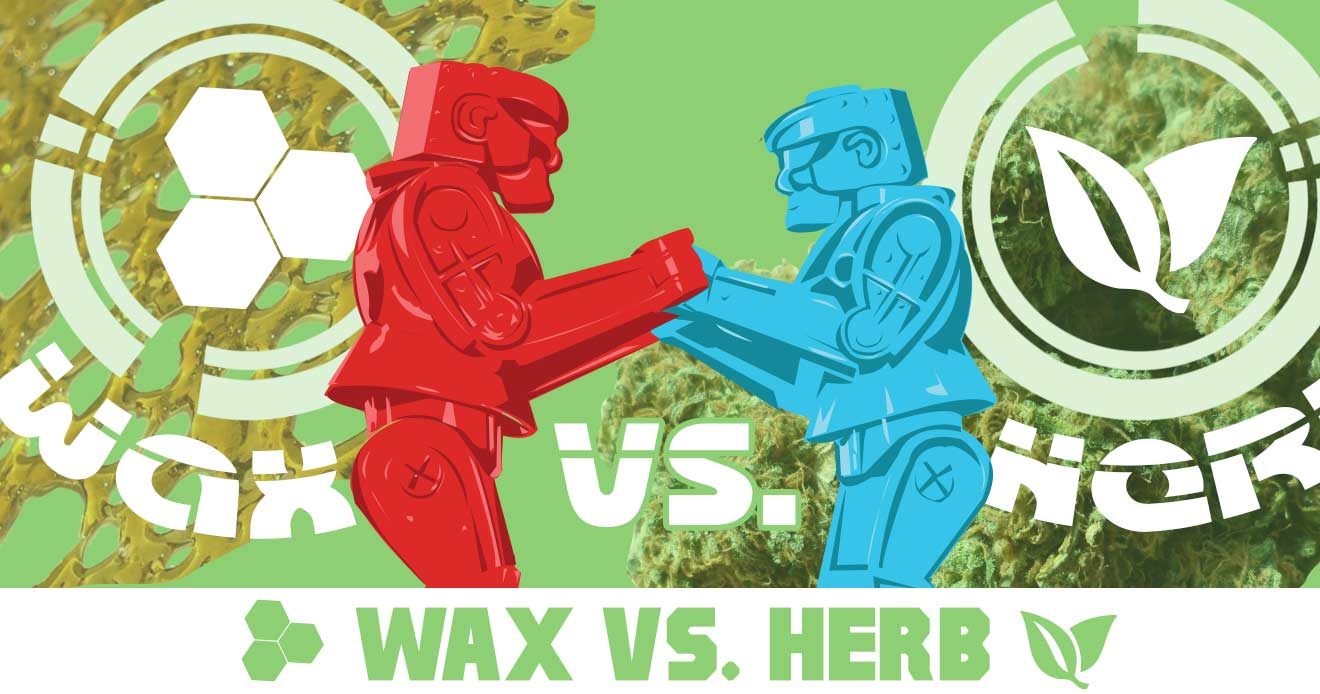 The Difference Between Concentrates and Dry Herbs